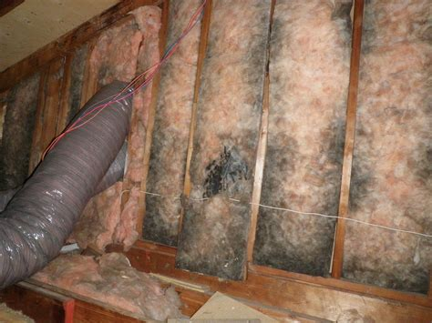 insulating basement walls with fiberglass exposed kneewall insulation in new castle county delaware