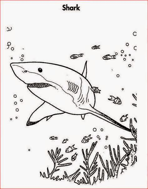 coloring pages of shark attacks coloring pages shark coloring pages free and printable