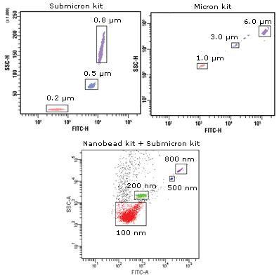 flow cytometry calibration size estimation bangs laboratories inc