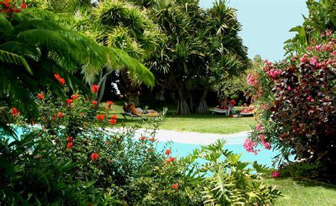 garten löwenzahn urlaub im garten botanischer garten auf la palma kanaren
