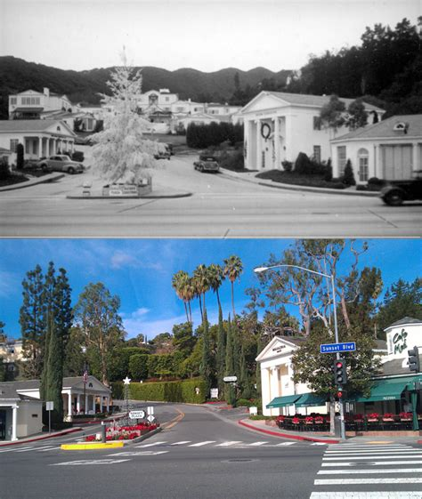 old hollywood homes then and now then and now sunset plaza apartments luxury living at