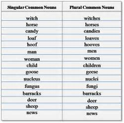 what is a common noun schools question timeschools