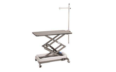 Grooming Tables by Electric Lowboy Grooming Table For Mobile Or