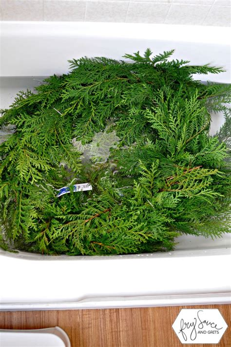 how to prevent christmas tree from drying out how to prevent fresh greenery from drying out