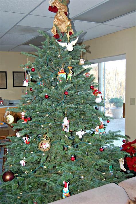 christmas tree job application photo albums fabulous