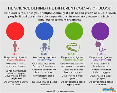 color of oxygenated blood which colors of blood exist among living animals quora