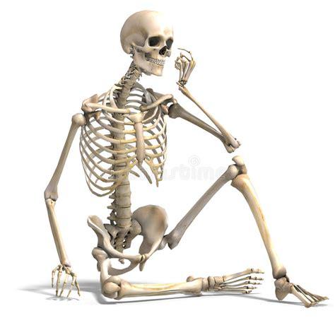 imagenes de una calavera animada anatomisch correct mannelijk skelet stock illustratie
