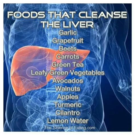 Liver Detox And Psoriasis by 223 Best Nature S Medicine Images On Health
