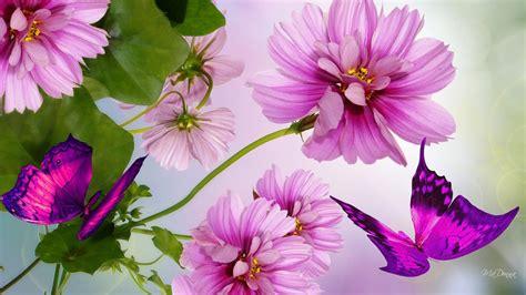 imagenes wallpapers bonitas imagenes de flores mas hermosas del mundo flores hermosas