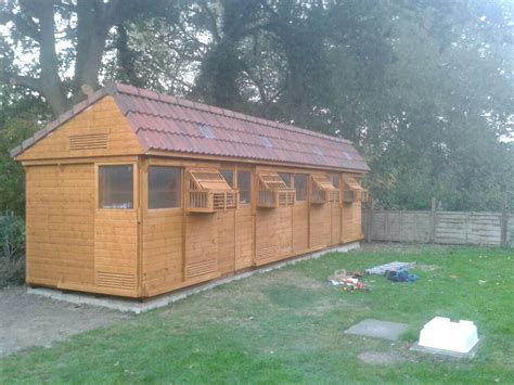 Pigeon Sheds by Pigeon Loft Roof Www Imgkid The Image Kid Has It