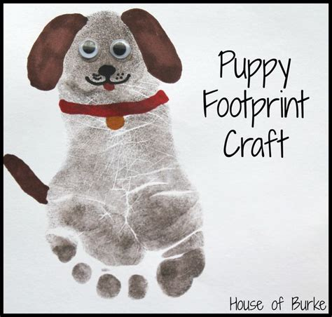 pet craft projects best 25 infant projects ideas on infant
