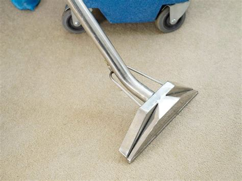 carpet and upholstery cleaning melbourne rug and carpet cleaning in melbourne fantastic cleaners