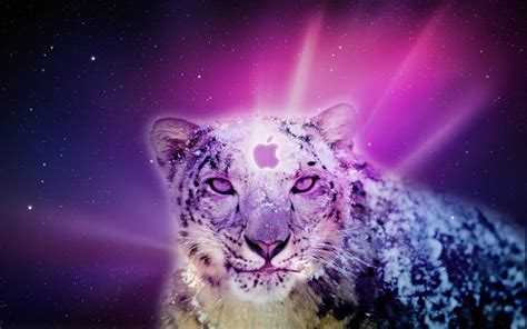 wallpaper mac leopard snow leopard mac wallpapers wallpaper cave