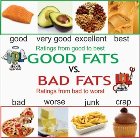 1 serving of healthy fats fats healthy fats and unhealthy fats pmf ias