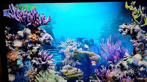 themes for windows 7 aquarium new ps4 themes aquarium dynamic theme ps4 youtube