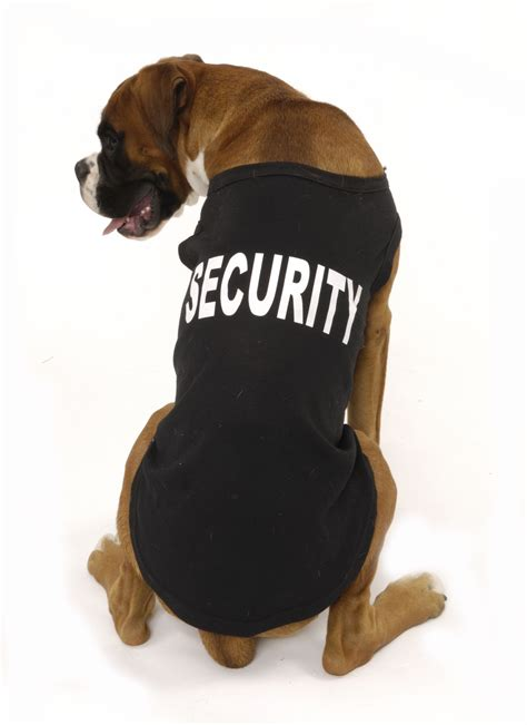 best breeds for home protection helpful tips