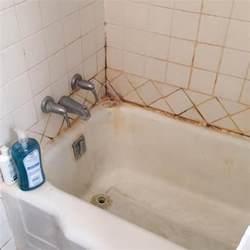 how to stop bathroom mold comfort windows