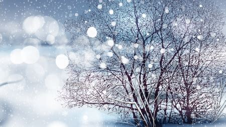 firefox themes snow winter bokeh winter nature background wallpapers on