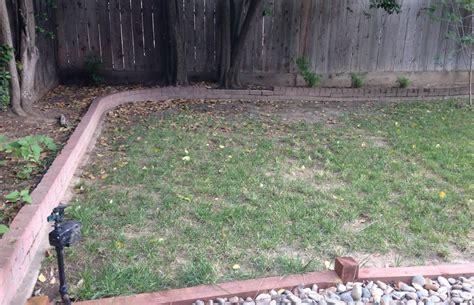 backyard sprinkler system the best 28 images of backyard sprinkler backyard