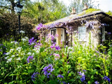 Traditional Cottage Garden Flowers How To Create A Cottage Garden Using Indigenous South Plants