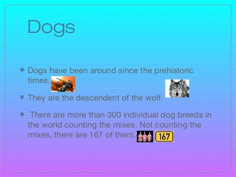 about dogs facts