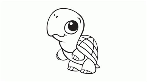 Turtle images cartoon kids coloring