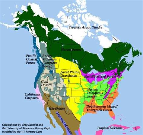 america map biome desert biome location map desert get free image about