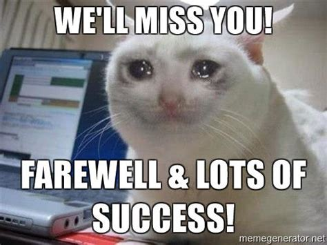 Crying Cat Meme - image crying cat well miss you farewell lots of success