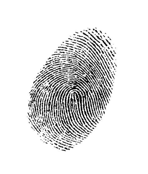 finger prints a novel fingerprint images