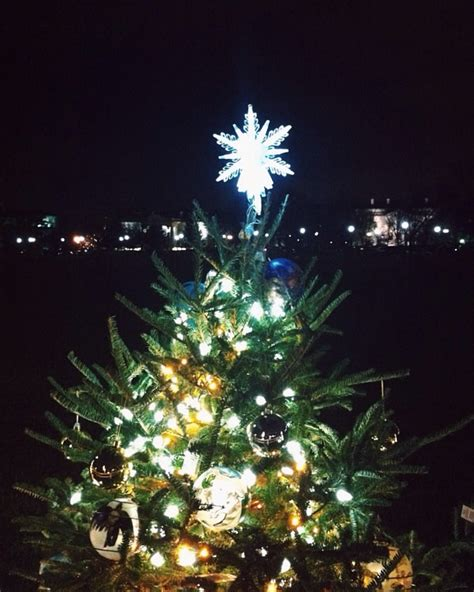 national christmas tree travelcraft journal