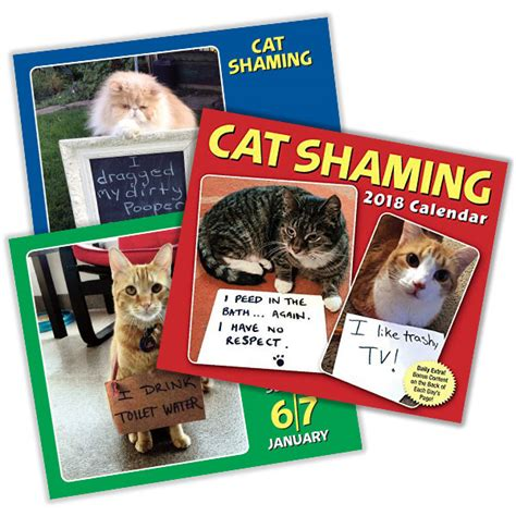 cat gallery calendar 2018 0761193375 2018 cat shaming desktop calendar