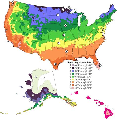 gardening zones plant hardiness zone map aldridge lawn and landscape