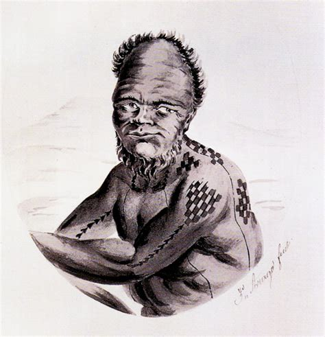 Kakau Tattoo History | kakau the art of traditional tattoo in hawai i