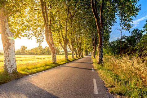 photo  nature roads green stocksnapio
