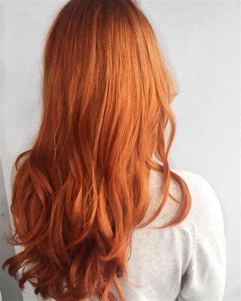 apricot hair color apricot hair color www pixshark images galleries