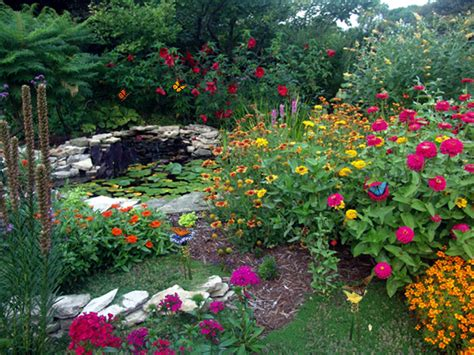 backyard butterfly garden rain gardens school programs education ohio river