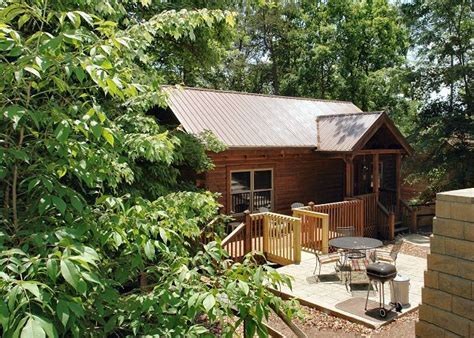 1 bedroom pet friendly cabins in gatlinburg tn 57 best cabins in tn images on pinterest pigeon forge