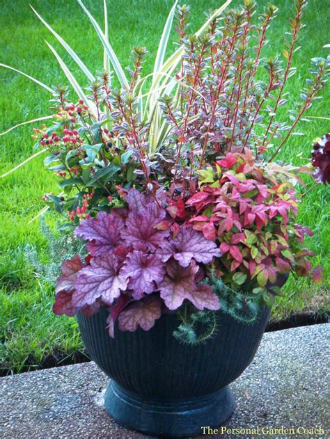 Design For Potted Plants For Shade Ideas The 22 Best Images About Perennial Container Garden Ideas On Planters