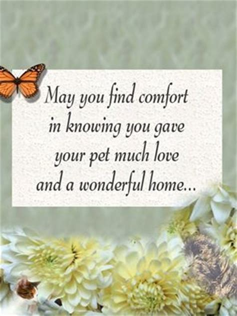 May You Find Comfort by May You Find Comfort In Knowing You Gave Your Pet Much