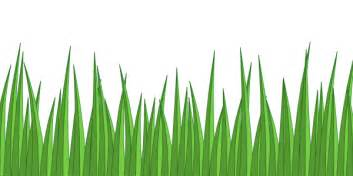 cartoon grass texture cliparts