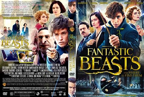 Where To Buy A Cover by Fantastic Beasts And Where To Find Them Dvd Covers