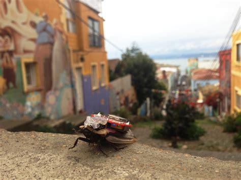 backyard brains roboroach n 229 kan du styre en kakerlakk fra mobiltelefonen din