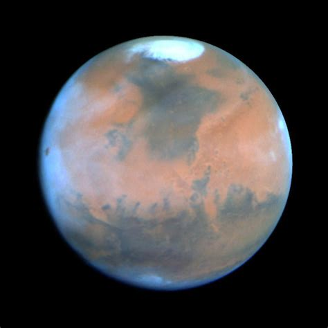 the riddle of mars the planet classic reprint books permafrost microbes survive conditions similar to those on