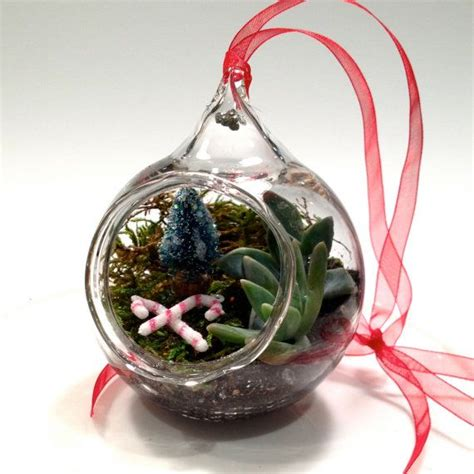 front open terrarium ornament holiday bazaar pinterest