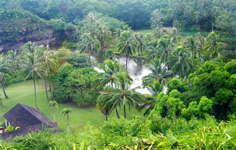 Botanical Garden Kauai Allerton Garden Kauai Gwen Books