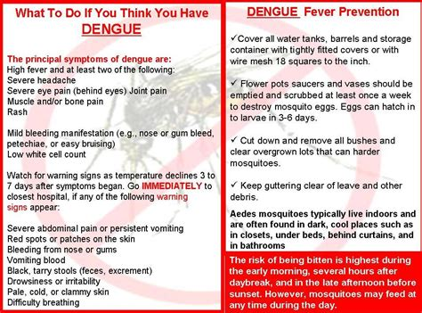 fever treatment dengue fever treatment and management