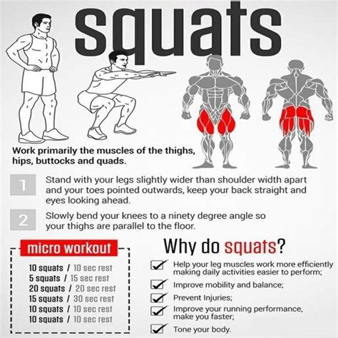 fitness routines squats and health and fitness on