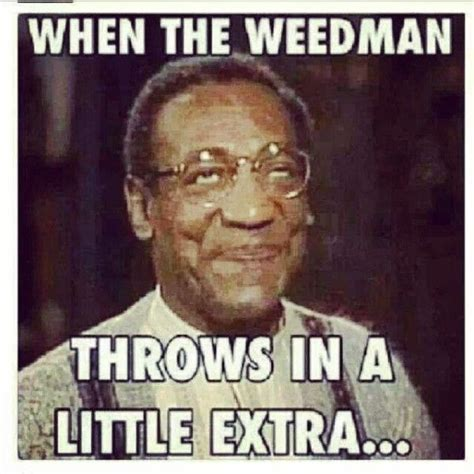 Best Weed Memes - 75 best images about stoner life on pinterest