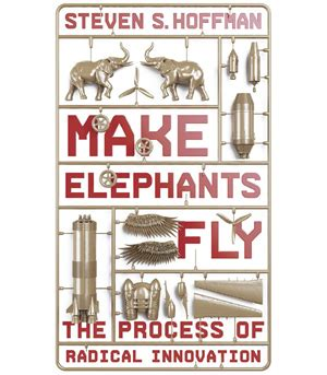 make elephants fly the process of radical innovation books lavamind