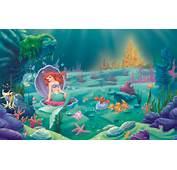 The Little Mermaid Ariel Cartoon 6967359